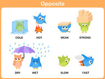 Opposite word for preschool. Flat design - Opposite word for preschool royalty free illustration