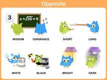 Opposite word for preschool Royalty Free Stock Photo