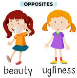 Opposite words for beauty and ugliness Royalty Free Stock Photo