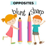 Opposite words for blunt and sharp Royalty Free Stock Photography