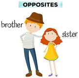 Opposite words for brother and sister. Illustration Stock Photo