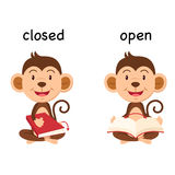 Opposite words closed and open vector. Illustration Royalty Free Stock Image