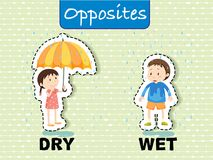 Opposite words for dry and wet. Illustration Royalty Free Stock Image