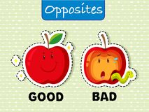 Opposite words for good and bad royalty free illustration