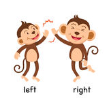 Opposite words left and right vector Royalty Free Stock Photo