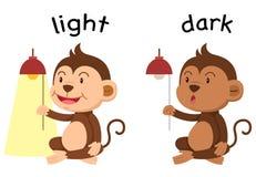 Opposite words light and dark vector Stock Images