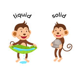 Opposite words liquid and solid vector Stock Images