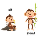 Opposite words sit and stand vector. Illustration royalty free illustration