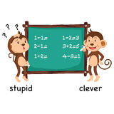 Opposite words stupid and clever vector Royalty Free Stock Image