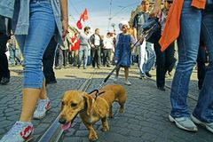 Oppositions-Demonstrationszug am 1. Mai 2008 Stockfotos