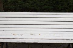 opróżnia białą ławkę na jesieni scenerii parku zdjęcie royalty free