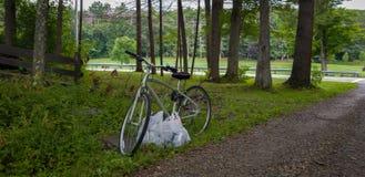 Opróżnia bicykl po środku lasu podczas gdy torba na zakupy zdjęcia stock