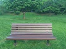 Opróżnia drewnianą parkową ławkę otaczającą zieloną trawą i drzewami Fotografia Stock