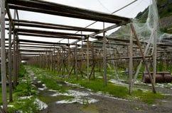 Opróżnia drewnianą sztokfisz strukturę z małymi solankowymi stosami na zieleni ziemi Obrazy Stock