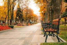 Opróżnia drewniane ławki i malowniczego jesień parka zdjęcie royalty free