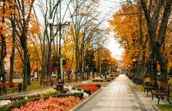 Opróżnia drewniane ławki i malowniczego jesień parka obraz royalty free