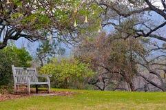 Opróżnia krzesła Zdjęcie Royalty Free
