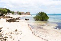 Opróżnia piaskowatą plażę wyspa, mangrowe i resztki kolonisty dom Mozambik, ocean indyjski Nampula Portugalczyk Afryka Wschodnia fotografia stock