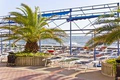 Opróżnia plażę z słońca surfboard i loungers Fotografia Royalty Free