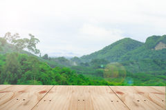 Opróżnia stół na Naturalnym zielonym ruch plamy abstrakcie Zdjęcie Stock