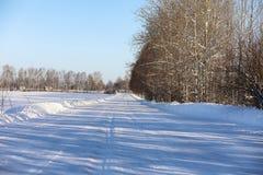Opróżnia wiejską drogę w lesie w zima dniu Zdjęcia Stock