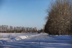 Opróżnia wiejską drogę w lesie w zima dniu Zdjęcia Royalty Free