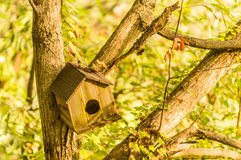 Opróżnia drewnianego ptaka dom Fotografia Royalty Free