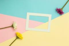 Opróżnia ramowego i kwiatów mieszkanie nieatutowego Zdjęcie Royalty Free