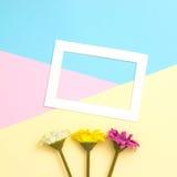 Opróżnia ramowego i kwiatów mieszkanie nieatutowego Obrazy Royalty Free