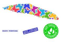 Oprócz natura kolażu mapa Haiti Tortuga wyspa z motylami i gum Watermarks royalty ilustracja