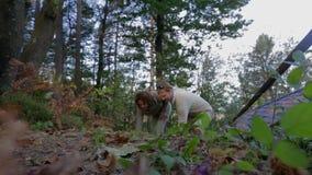 Oprapend iets van de vloer in het bos stock videobeelden