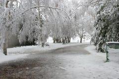 Oprijlaan die onder sneeuw wordt begraven. Stock Fotografie