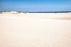Opróżnia plażę na Bazaruto wyspie Obrazy Stock