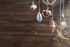 Opschorting van overzeese shells en overzeese sterren op houten achtergrond royalty-vrije stock afbeeldingen