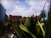 Opstandmuseum in Hidalgo-Paviljoen, Aguascalientes, Mexico royalty-vrije stock foto