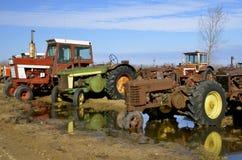 Opstelling van oude tractoren stock foto's