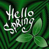 Opta la textura del vector del arte Hola primavera EPS10 Imagenes de archivo