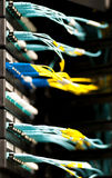 Optic cables connected to panel in server room. Royalty Free Stock Images