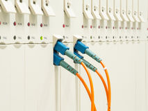 Optic fiber cables connected Stock Photography