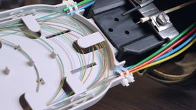 The optical coupler. The optical coupling with colored fibers in the tray stock image