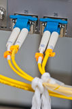Optical fiber Stock Image