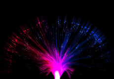 Optical fiber Royalty Free Stock Photo