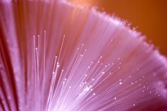Optical fibers stock image