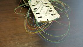 Optical tray with colored fibers. Optical fibers with colored tray on wooden background stock images