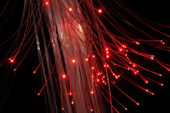 Optical fibers with red light Stock Images
