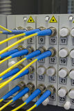 Optical fibre information technology Stock Image