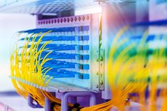 Optical fibre information technology equipment. In data center royalty free stock photo