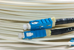 Optical Fibre Patch Cord Stock Photos