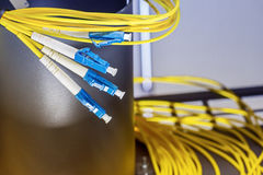 Optical fibre plugs Stock Images