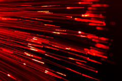 Optical fibres abstract blurred technology background. Bunch of optical fibres flying from deep as blurred abstract technology background Stock Image